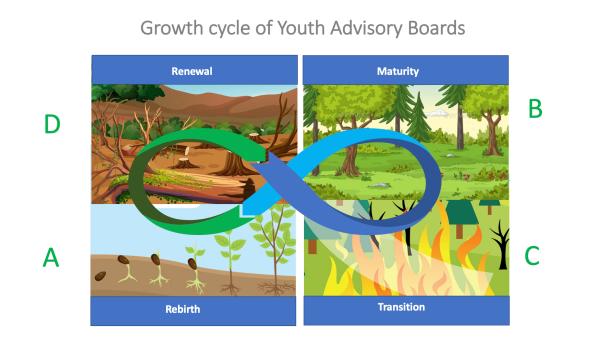 YAB growth cycle
